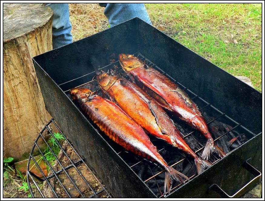 Горячие копчение рыбы рецепты