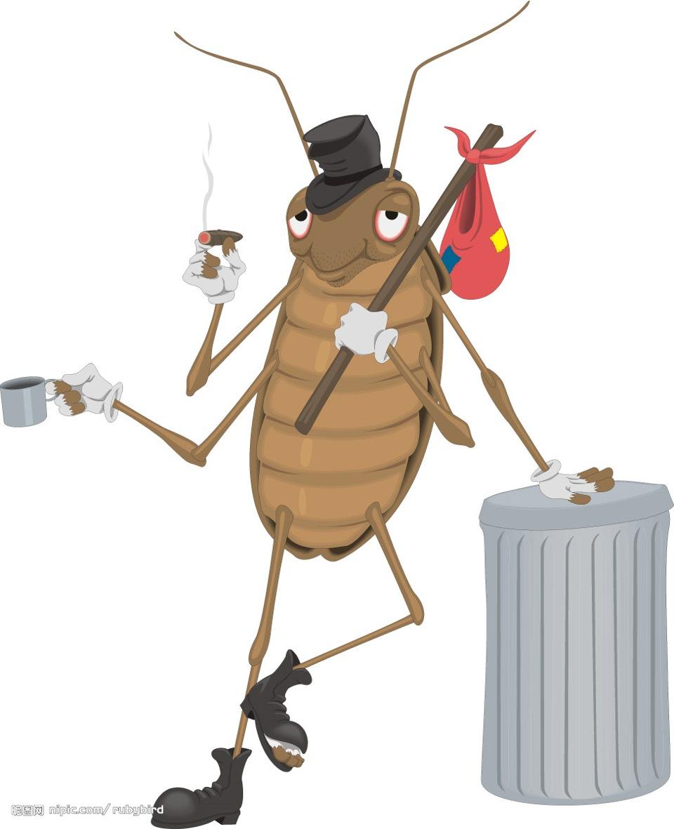 Днем, жук картинка смешная