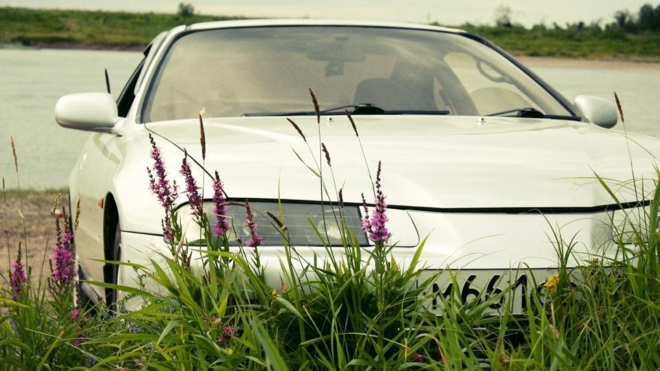 Газон пластмассовый трава