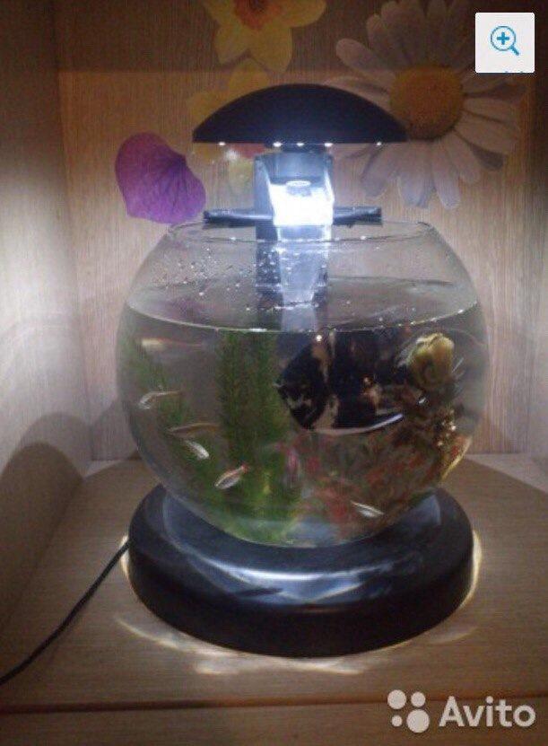 Не лопнет ли стекло на мг прожекторе при попадании воды
