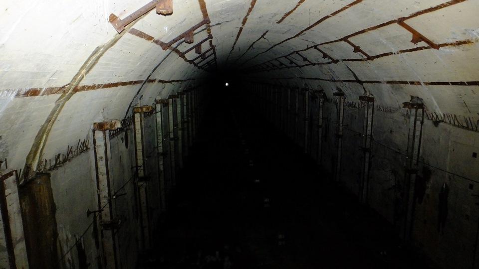 голос смотреть фото убежище подводных лодок в павловске зимовки полевой жаворонок