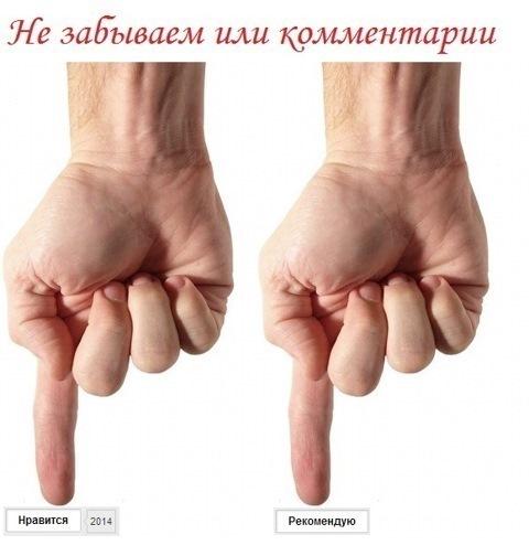 Мой блог на www.drive2.ru