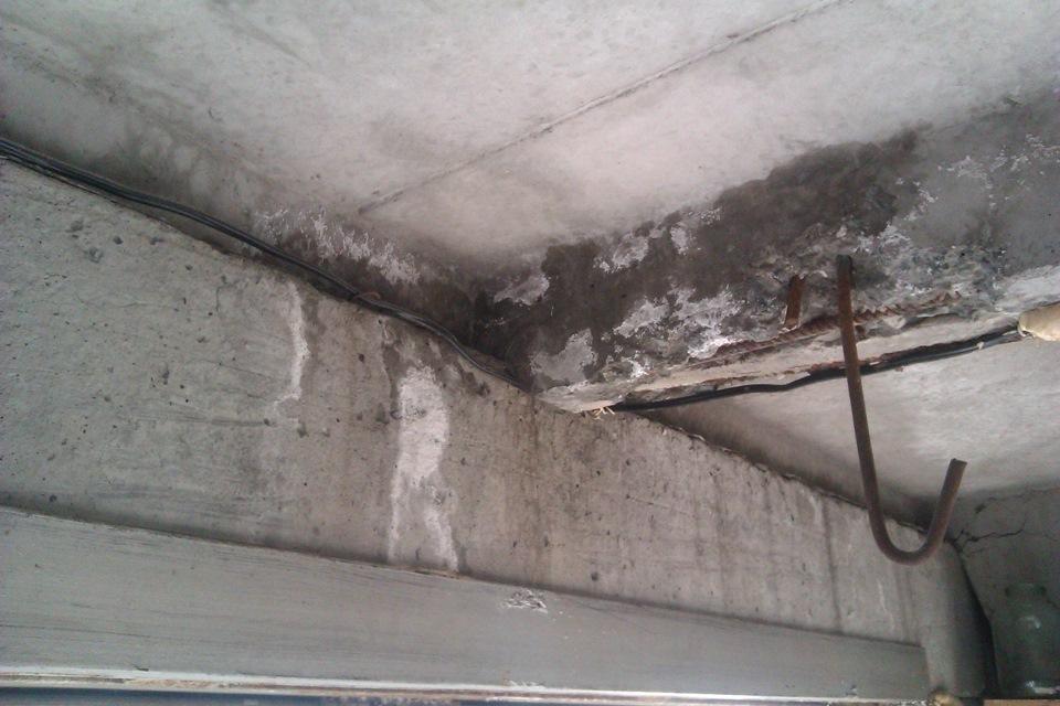 грибок в гараже как вывести