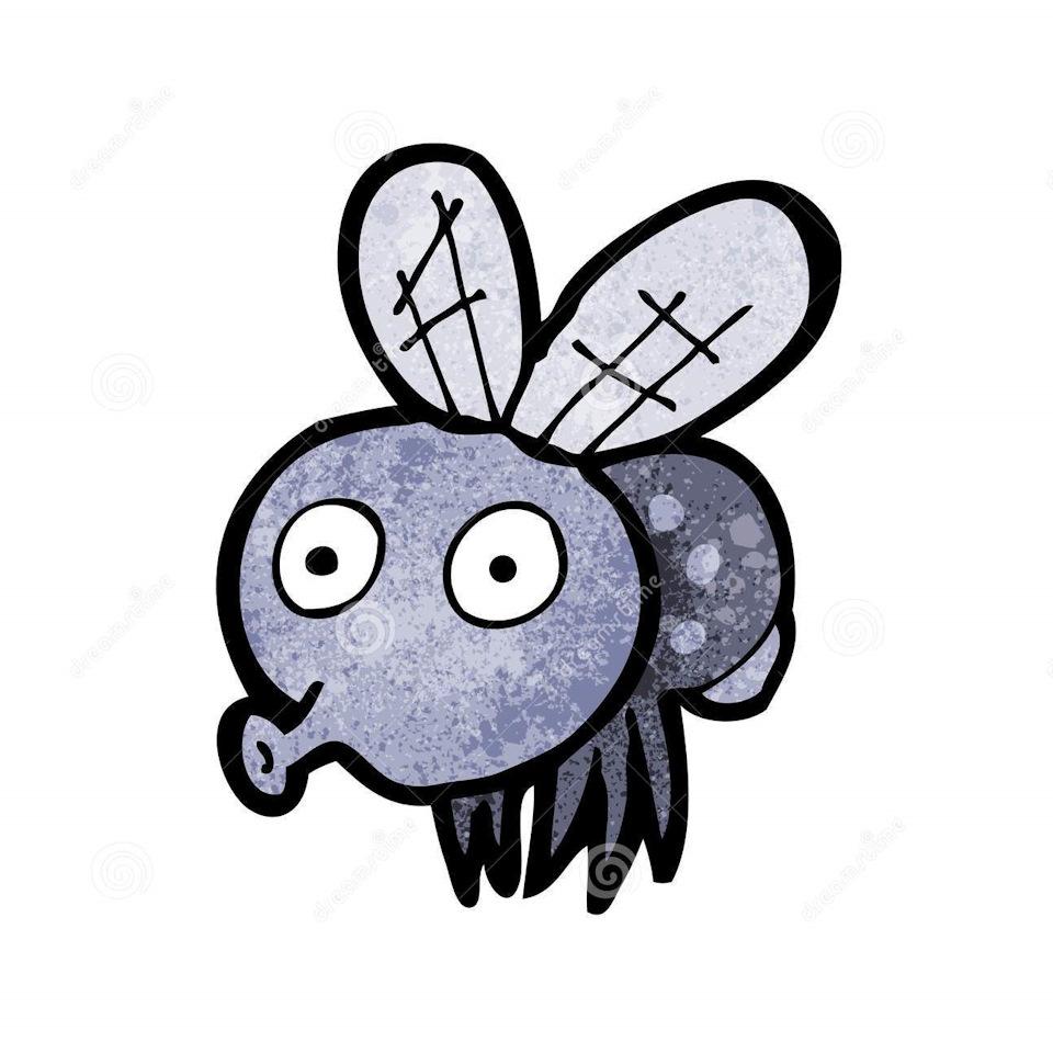 Яндекс картинки смешные мухи нарисованные