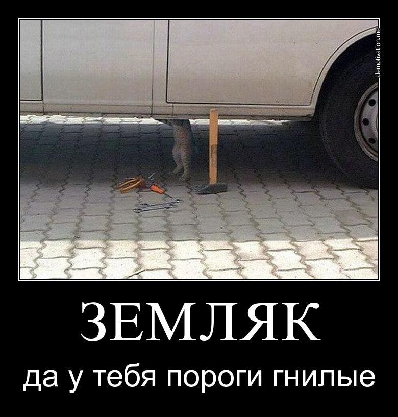 Кот, причин может быть масса автомеханик смешная картинка