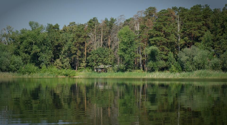 Картинки природы без обработки