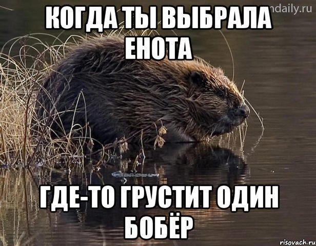 Анекдот Про Бобров