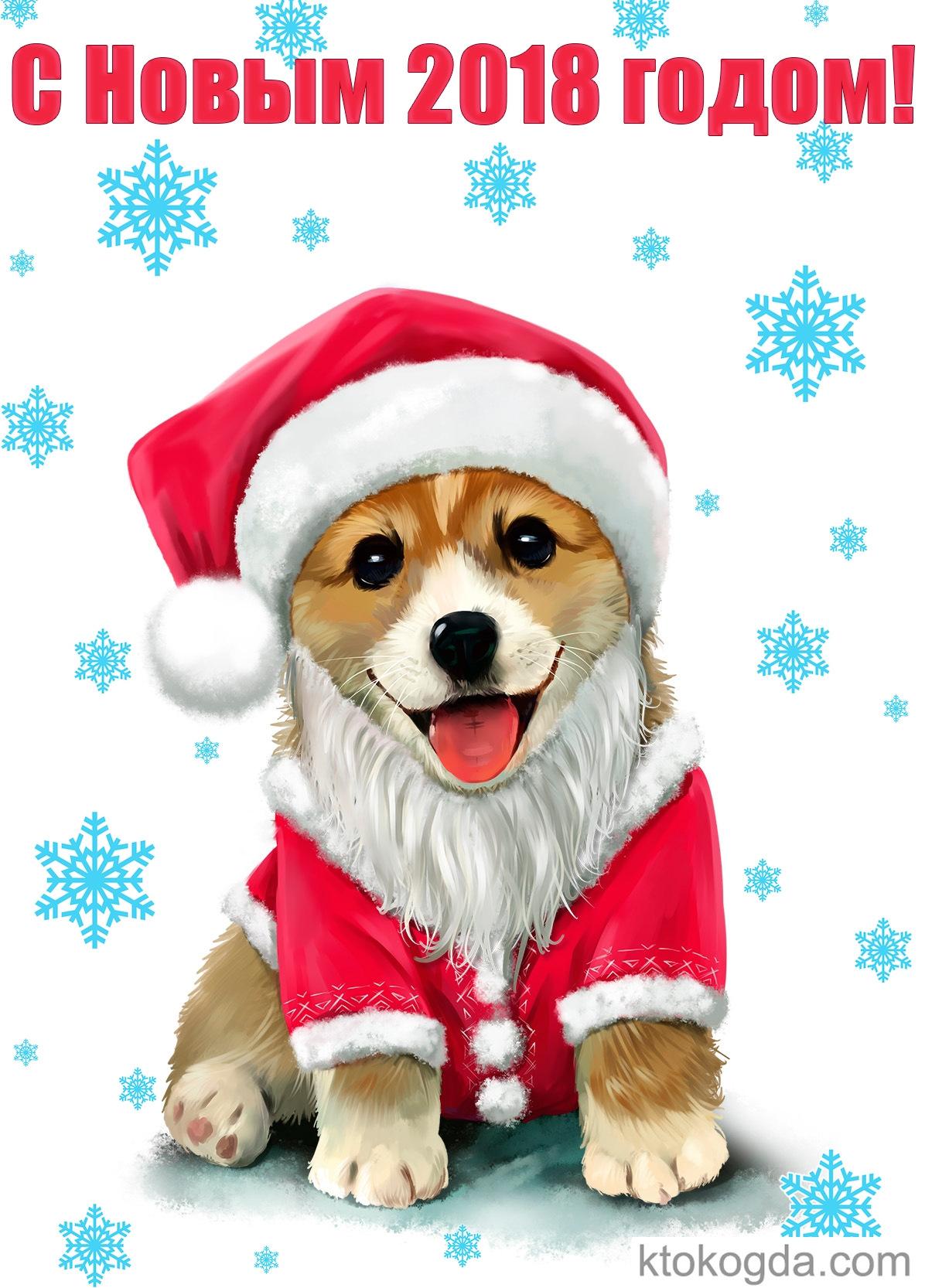 Дню, год собаки открытки картинки