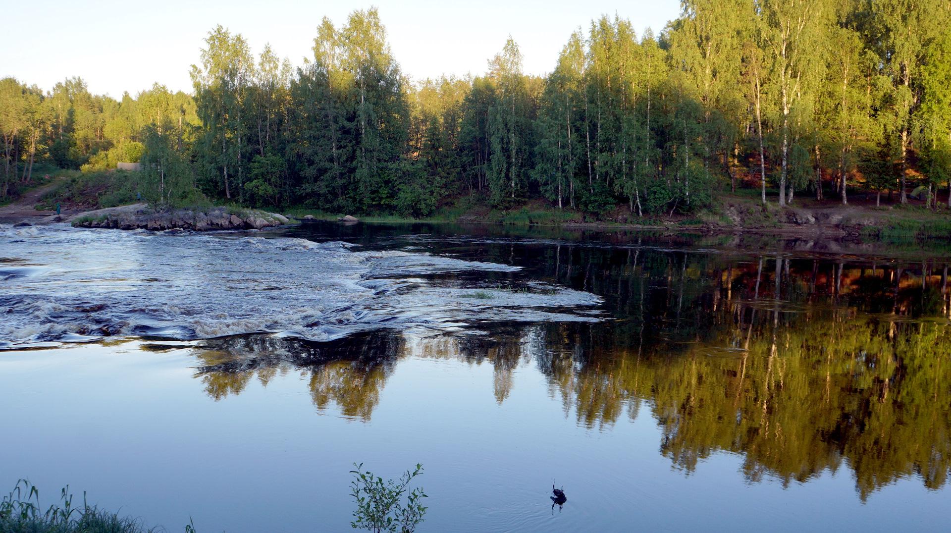 родная фото реки шуя в карелии д виданы крыше таких локомотивов