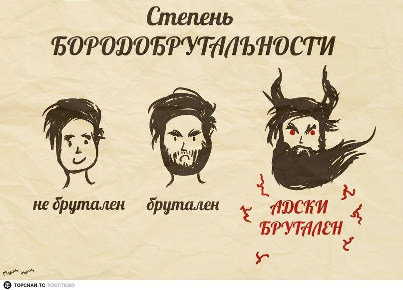 Смешные картинки о бороде, для