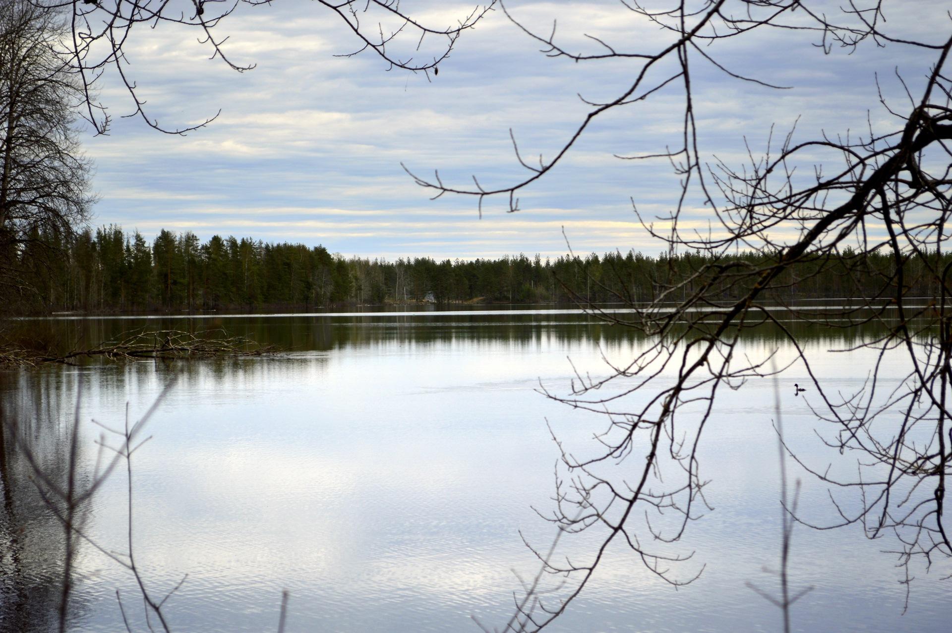 Озеро Сенновское