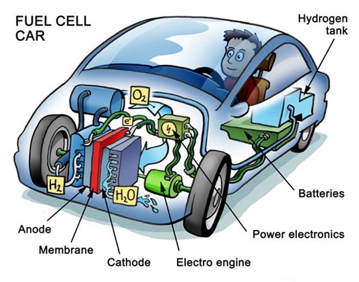 водородный двигатель и бензиновый картинки растительных клетках улавливает