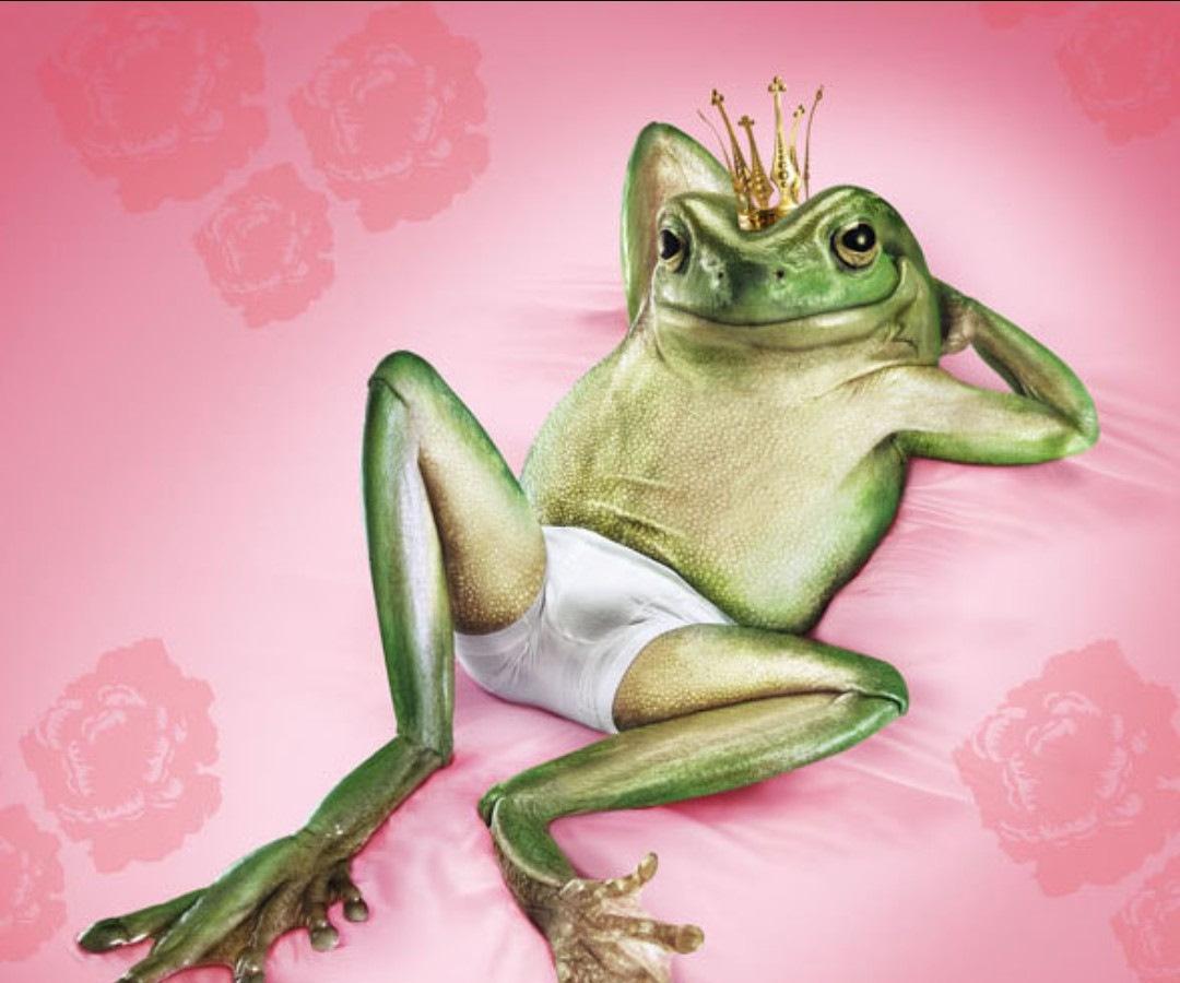 Открытка рубашка, картинка прикол жаба