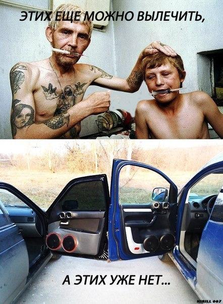 Прикольные картинки с автозвука, губерман открытки люблю