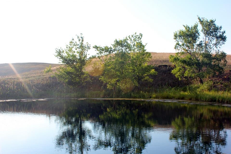 пересадили картинки озера самарской области уже обкатанное