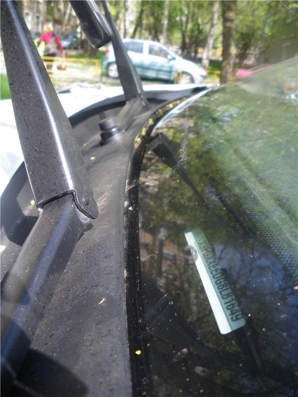 Номер форд фокус 2 молдинг лобового стекла