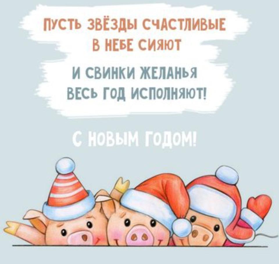 Поздравления с картинками с новым годом свиньи, днем