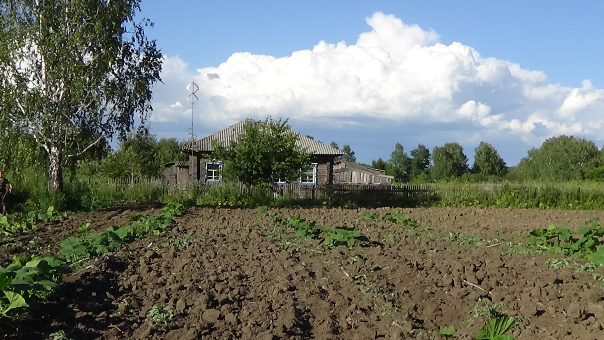 Огород в деревне фото