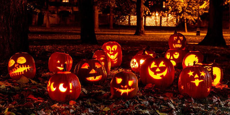 Download Halloween Trick or Treat today or play this and 2400 other top games online for free at GameHouse