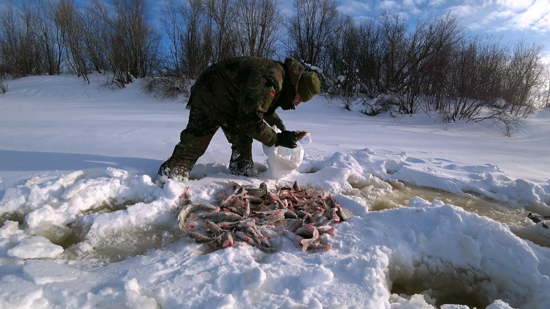 Как ловят рыбу зимой рыболовы-промысловики в глухой Сибири
