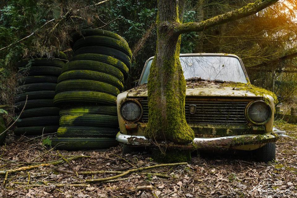 это нежнейшая фото брошенных автомобилей в лесу вам нравится