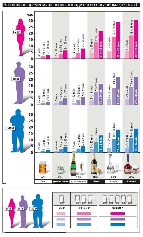 через какое время алкоголь выводится из крови