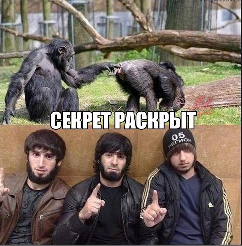 Смешная картинка кавказцев