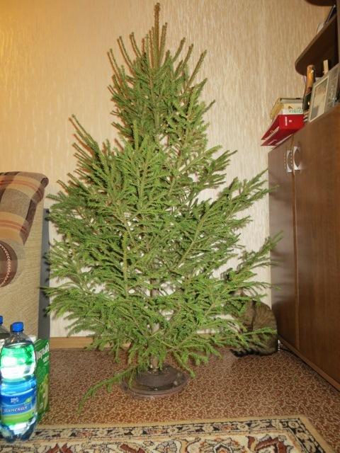 Мой ва�иан� под��авки для елки