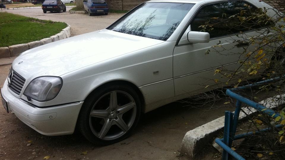 Mercedes benz cl white bear drive2 for Mercedes benz bear
