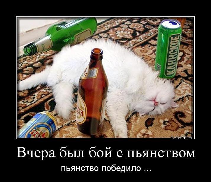Картинки с надписями после пьянки