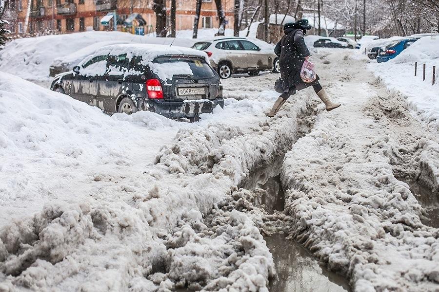 День, картинки прикольные о снегопаде