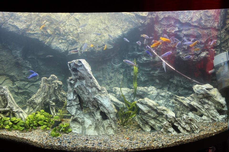Гроты для аквариума