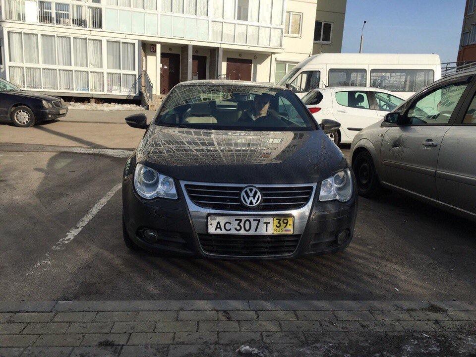 Проверка авто на арест бесплатно в украине
