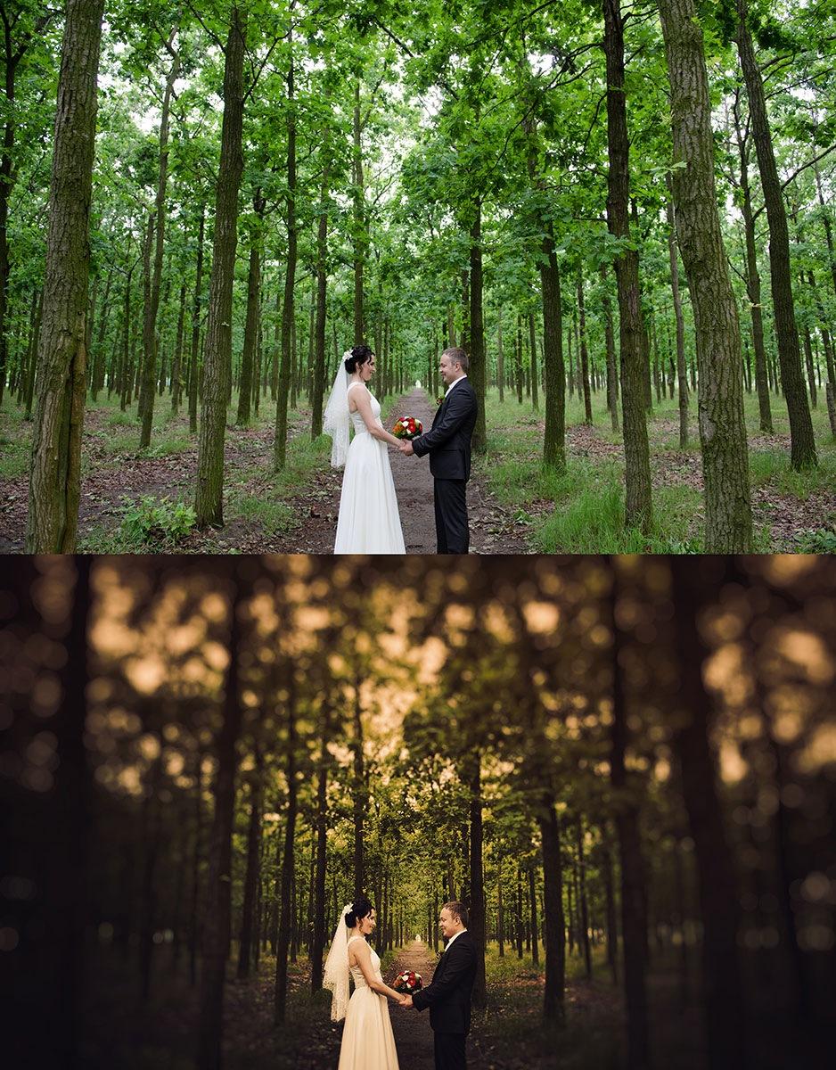 получается силу обработка свадебного фото в лайтрум живут