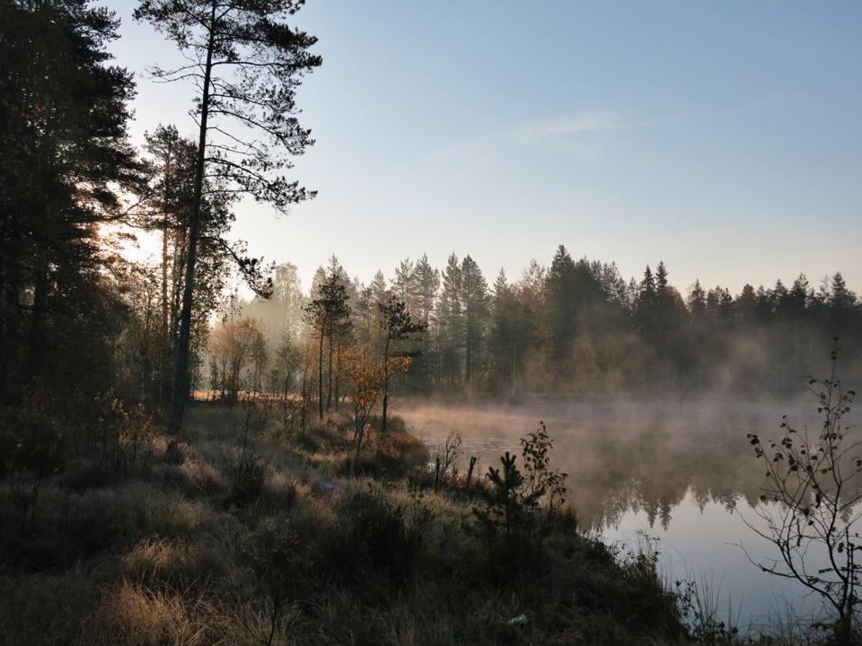 Фото пашозеро тихвинский район