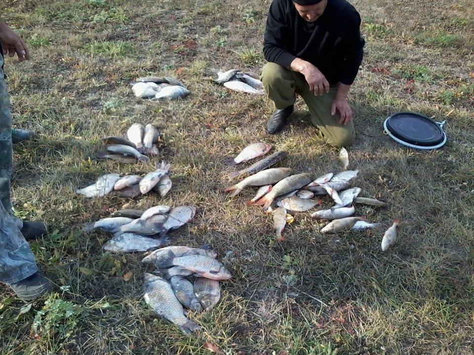 Рыбалка в астраханской области ахтубинский район
