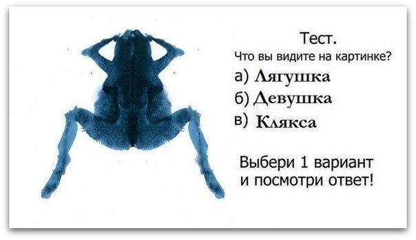 тест. что вы видите на картинке