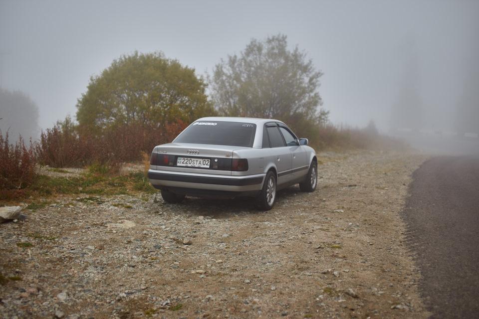 8d49bces-960.jpg