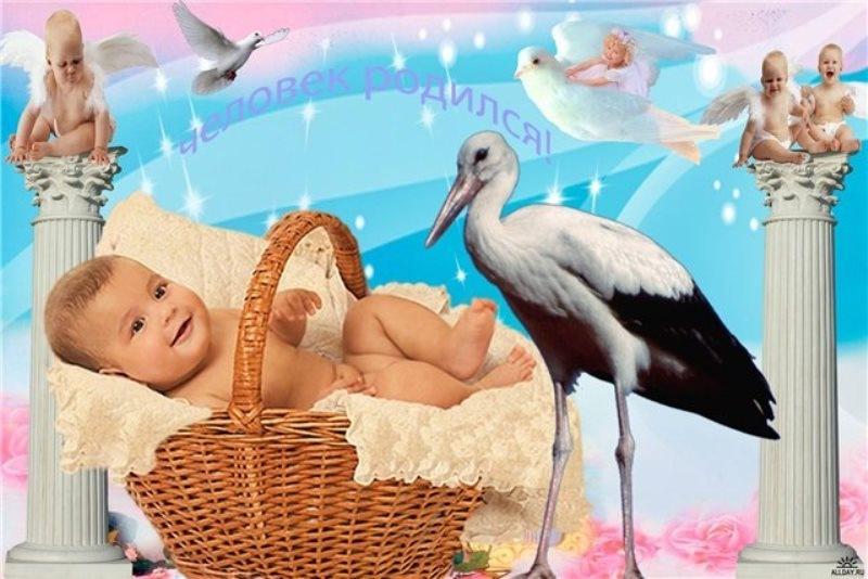 Картинки у меня родился внук, открытки днем рождение