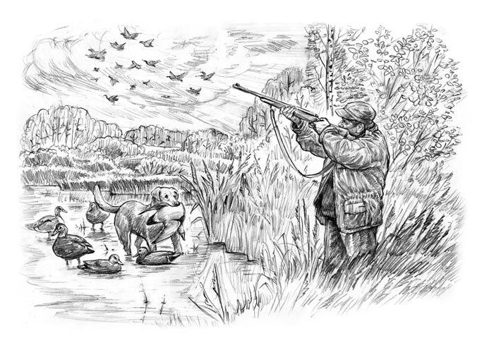 Рисунок про охоту в карандаше