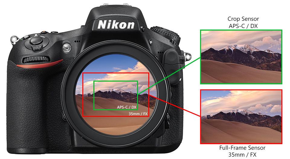 чем больше матрица тем лучше качество фото для