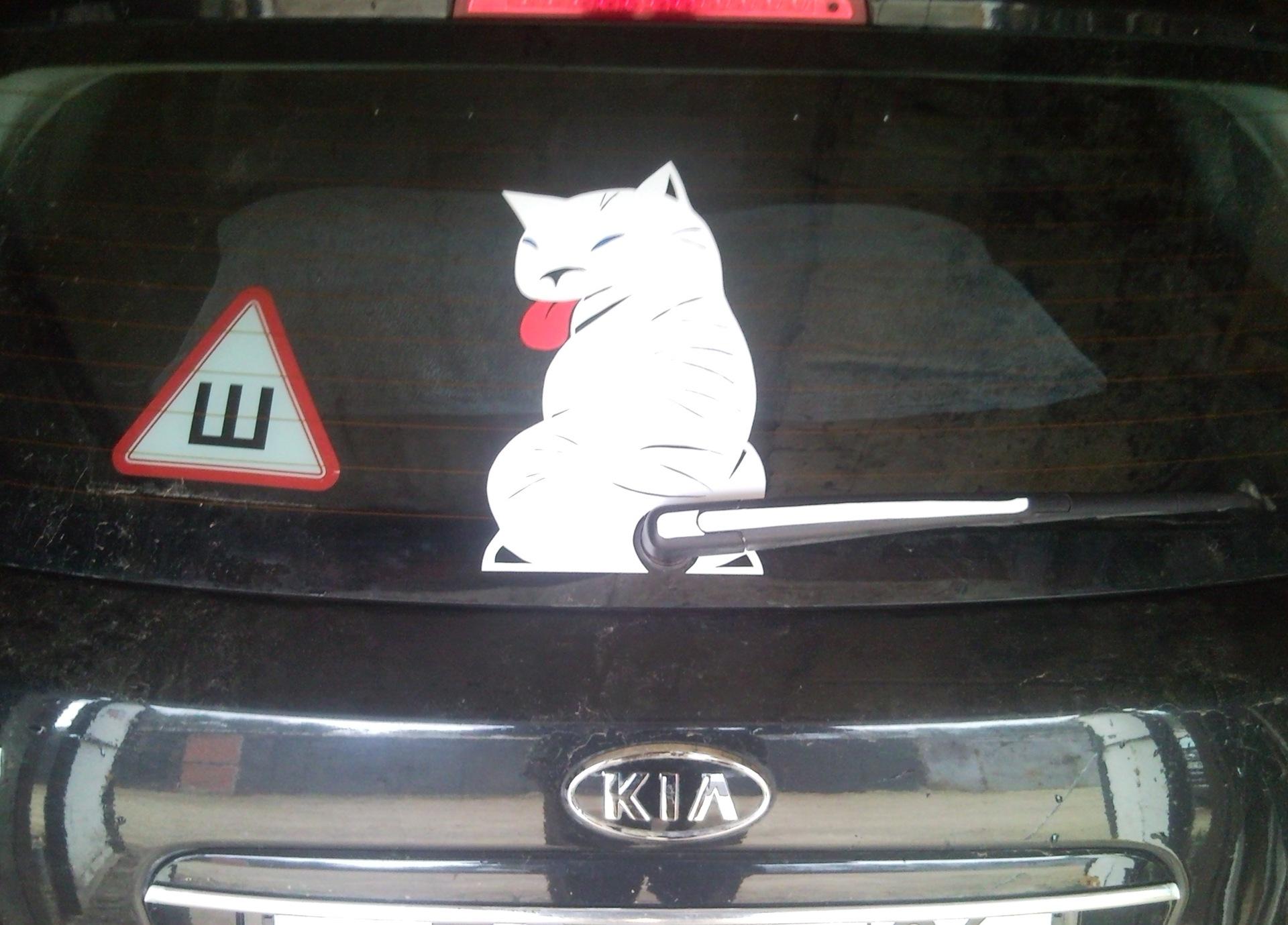 Прикольную картинку на стекло авто