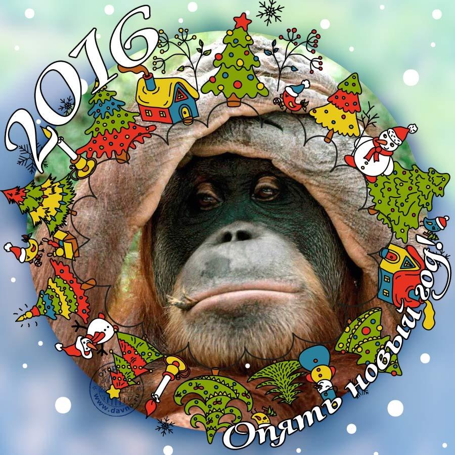 Картинки для нового года 2016 прикольные