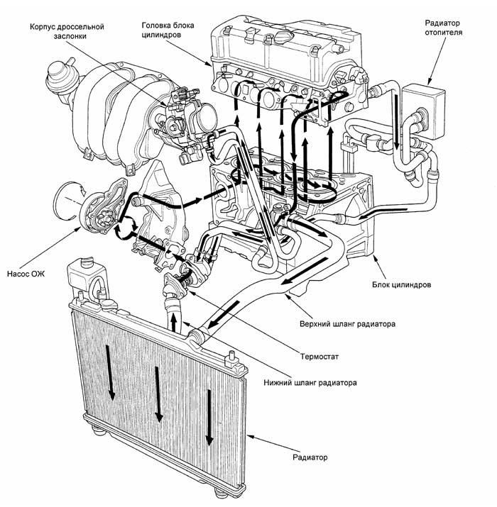 Toyota схема охлаждения