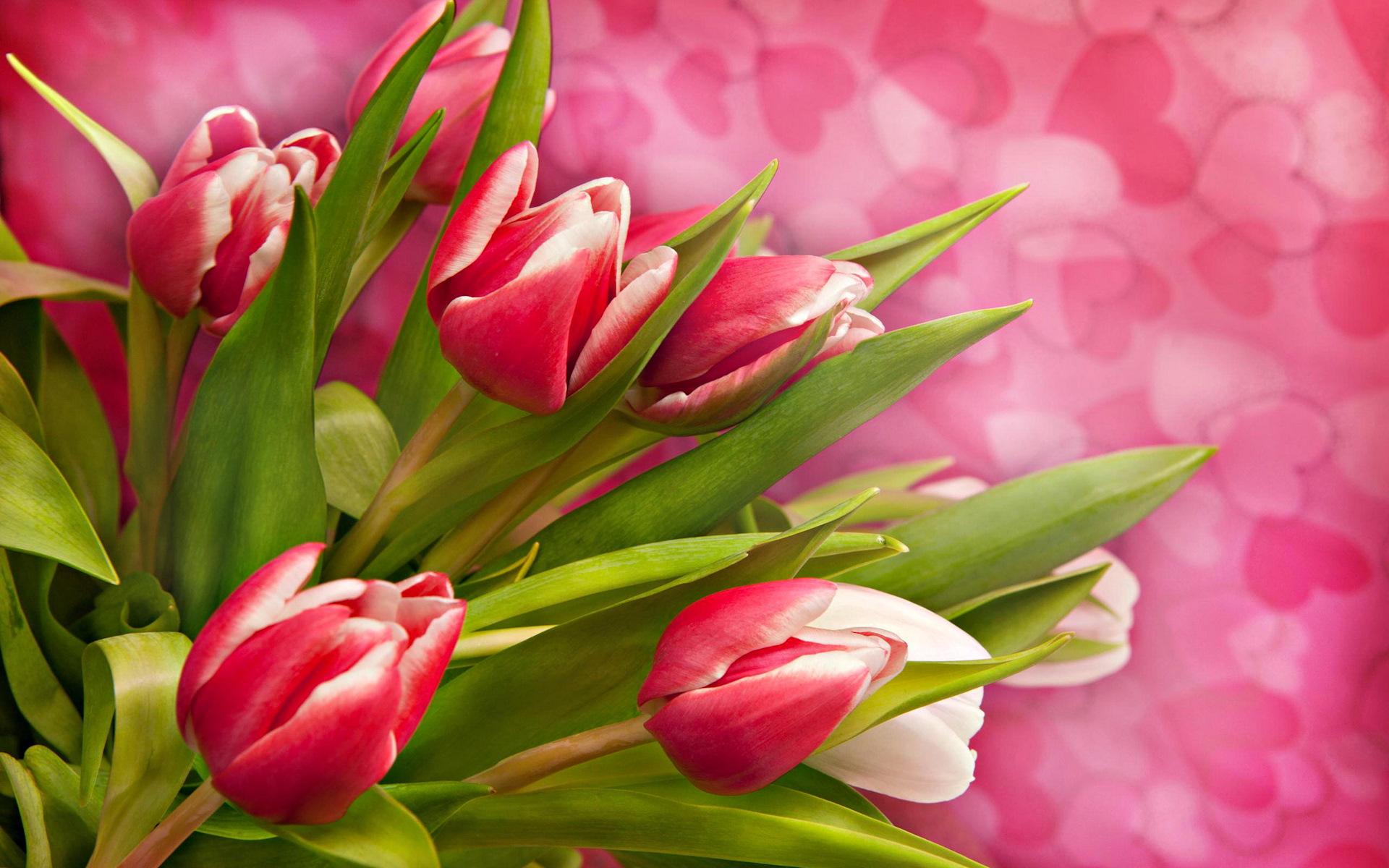 Открытки с 7 марта фото красивые