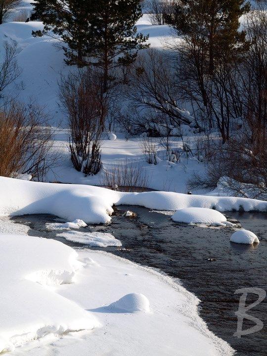 Картинки с жаворонком в небе зимой