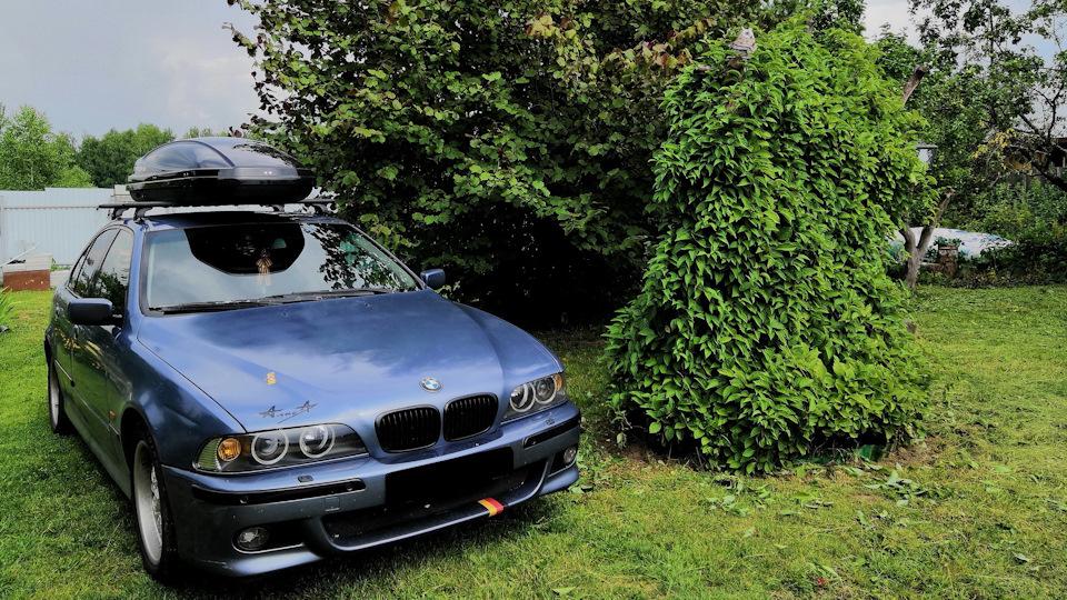 Bmw 5 Series Eva Von Nordheim Drive2