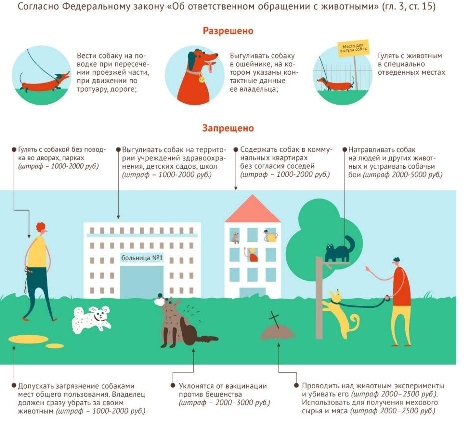 производители закон разрешающий держать домашних животных термобелье наоборот