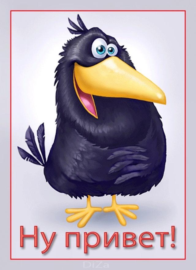 Смешные рисунки вороны, картинку или анимацию
