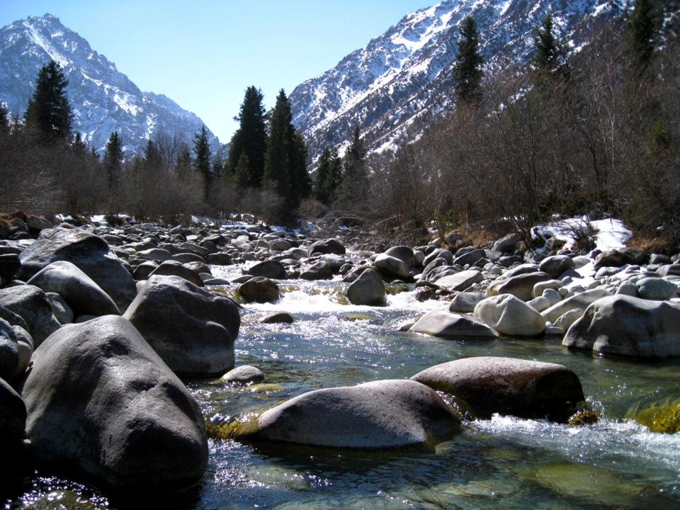 живые картинки природа кыргызстана посмотреть офиса